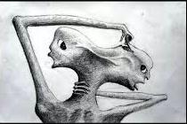 Bipolaridad esquizofrénica de la SEP